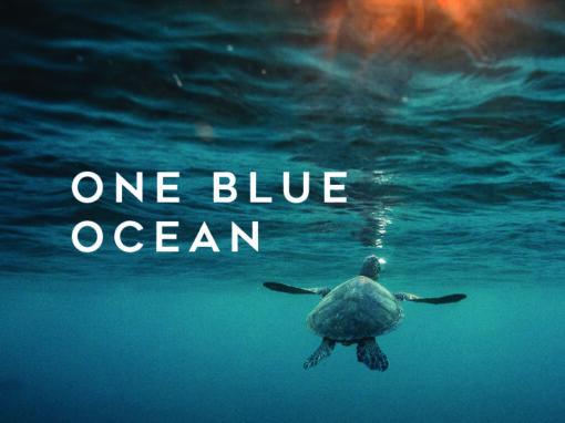 One Blue Ocean